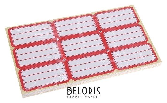Купить Набор 58 листов: ценники самоклеящиеся, 34 х 65 мм, 9 штук на 1 листе, Calligrata, Россия