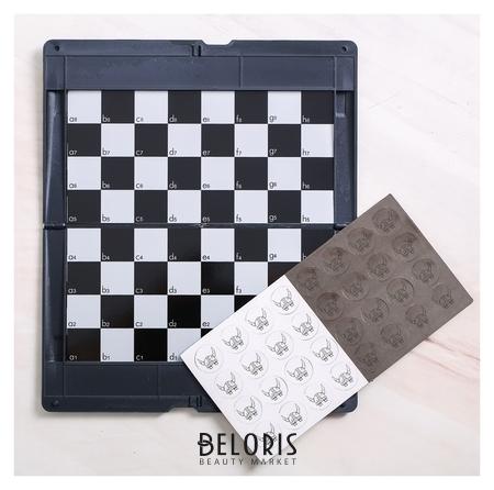 Игра в дорогу - шашки «Выбери свою сторону», р-р магнитного поля 17 × 10 см NNB